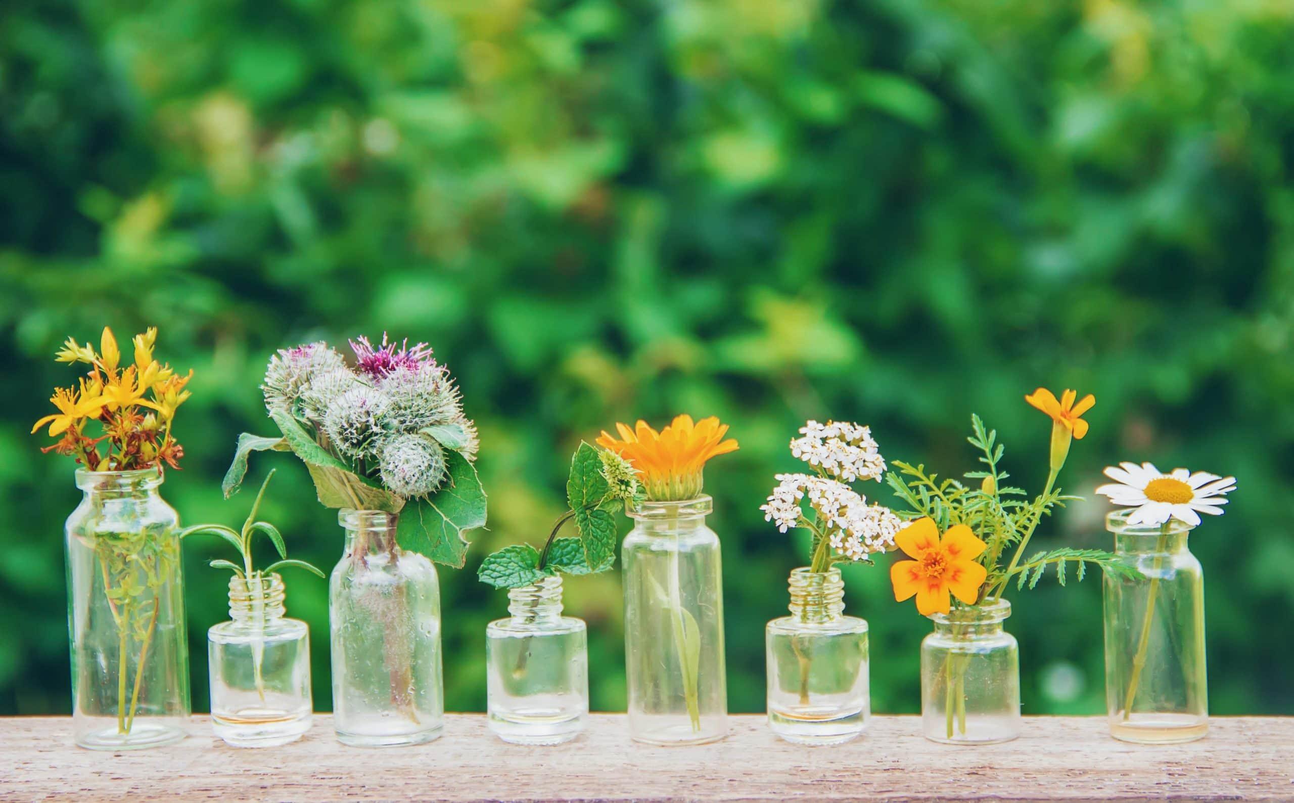 row of single plant bottles